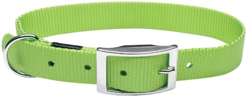 Nylon Double Ply Dog Collar (Dogit Nylon Double Ply Dog Collar with Buckle, X-Large, 26-Inch, Green)