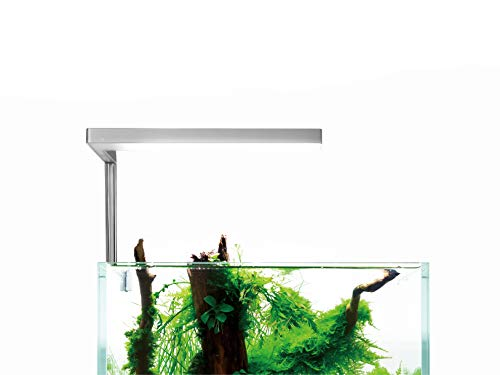 ONF Flat Nano - The Planted Aquarium Lighting,for 2~7gallon Fish Tank, Colorfull LED, Full Spectrum, 15-Watt, 1300 LM, 7000K, One Year Warranty.