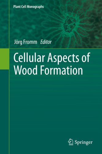 Cellular Aspects of Wood Formation: 20 (Plant Cell Monographs)