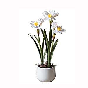 Nosterappou Simulation Narcissus Flower pots, Potted Plants, Decorative Table Decorations, Gifts 94