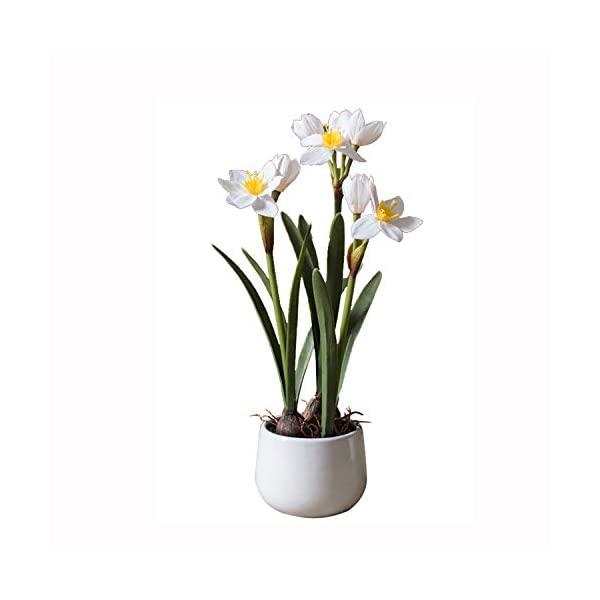 Nosterappou Simulation Narcissus Flower pots, Potted Plants, Decorative Table Decorations, Gifts