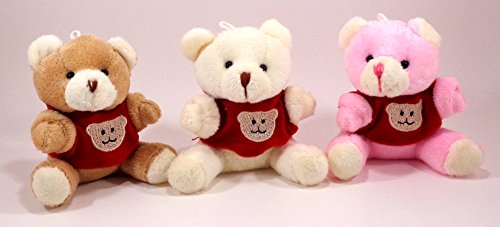 4 Teddy Bear (Trio of Plush Teddy Bear with Hooded Shirt - 4 inches)