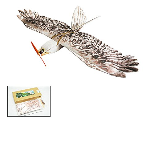 Remote Controlled Scale Training Airplane EPP Plane Model Mini Eagle Wingspan 1200mm Slow Flyer Biomimetic Aircraft Combo With Motor ESC Servo Transmitter Receiver for choice (E1501)