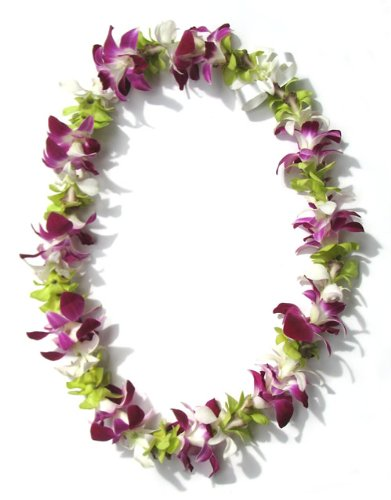 Hawaiian Lei - Fresh Single Strand Orchid Lei - Colorful Mix
