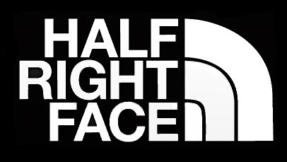 Half Right Face Military PREMIUM Decal Vinyl Sticker|Cars Trucks Vans Walls Laptop| White |7.5 x 3.75 - The Right Sunglasses Your For Face