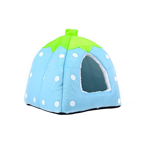 Spring Fever Strawberry Guinea Pigs Fleece House Rabbit Cat Pet Small Animal Bed Blue L (16.916.90.8 inch) by Spring Fever (Image #4)