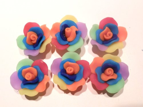 New 6 Large Rainbow Polymer Clay Rose Fimo Beads (Fimo Rose)