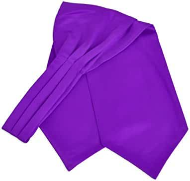 Men's Solid Color Satin Ascot Tie