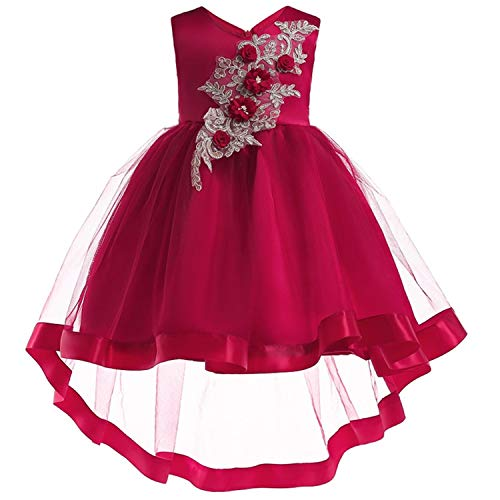 Baby Girl Embroidery Silk Princess Dress for Wedding Party Kids Dresses for Toddler Girl Children Fashion Christmas Clothing,Wine Red,9
