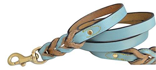 Buy turquoise leather dog leash