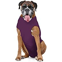 Amazon Com Anxiety Vest Dogs