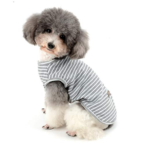 27019b5a Zunea Pet Dog Clothes Shirts Puppy T-Shirt Vest Summer Cool Tank Top  Striped Tee Shirt Clothing Soft Cotton Breathable Cats Apparel for Small  Dogs ...