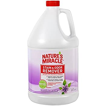 Amazon Com Nature S Miracle Scented Stain And Odor