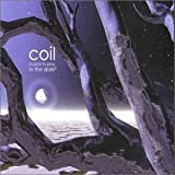 Musick to Play in the Dark Vol. 2 by Coil