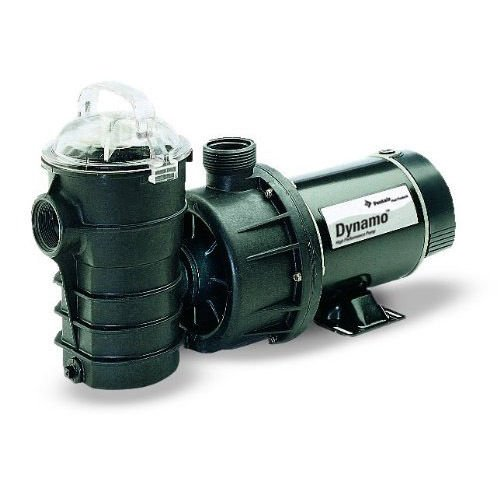 Pentair 340203 Stainless Steel Black Dynamo Two-Speed 115-Volt Pool Pump without Cord, 3/4-Horsepower