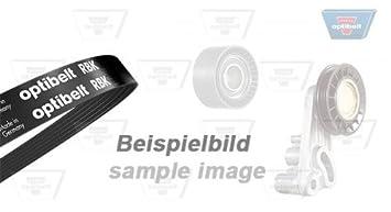 OPTI Belt 5 Pk 1230 kapitone Bujía