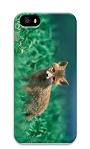 case cute covers fox pup PC Case for iphone 5/5S