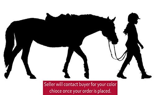 horse wall decals for girls - 5