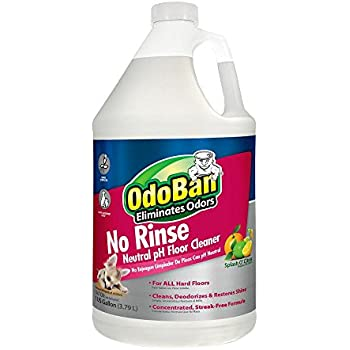 Amazon Com Odoban No Rinse Neutral Ph Floor Cleaner