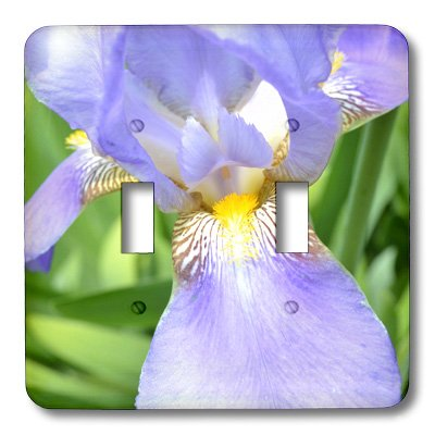 3dRose LLC lsp_22960_2 Purple Iris Flower Double Toggle Switch ()