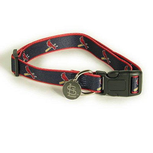 Sporty K9 Design No.2 St. Louis Cardinals Dog Collar, Medium/Large, My Pet Supplies