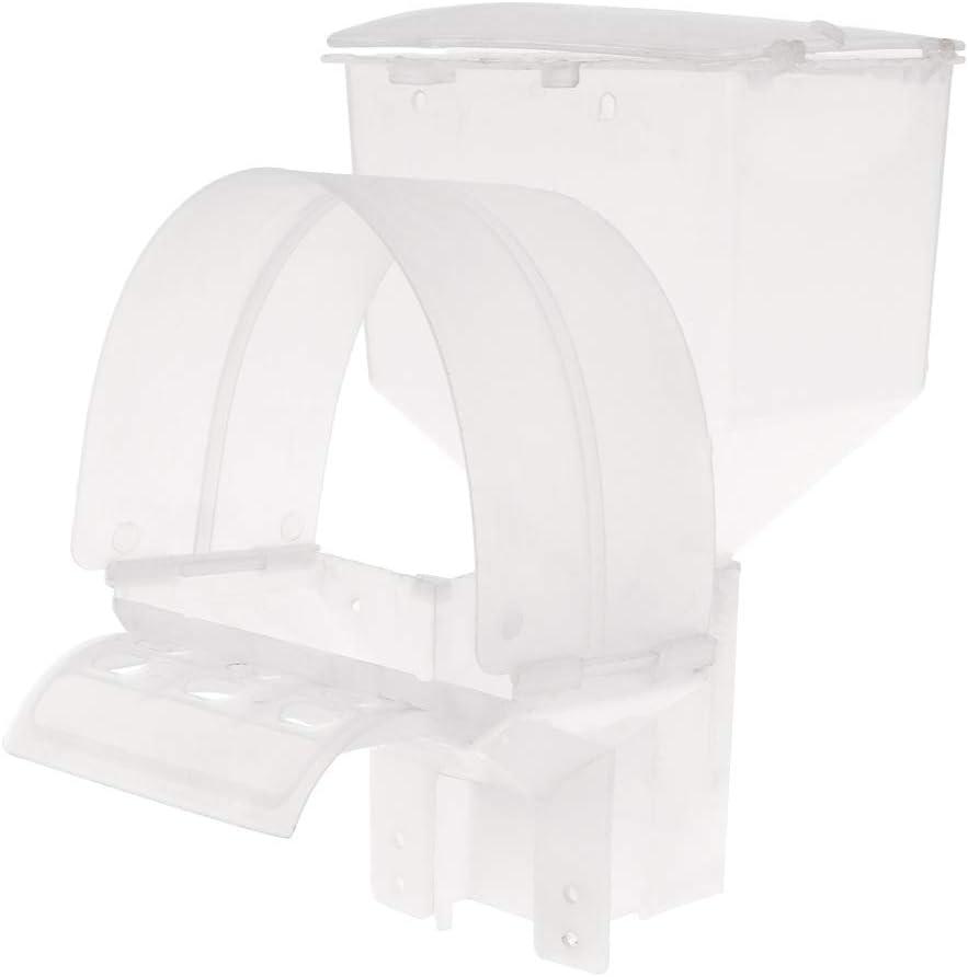 ECMQS - Comedero de palomas automático con agujero para jaula colgante de pájaros y loro, dispositivo dispensador de alimentos y caja de plástico