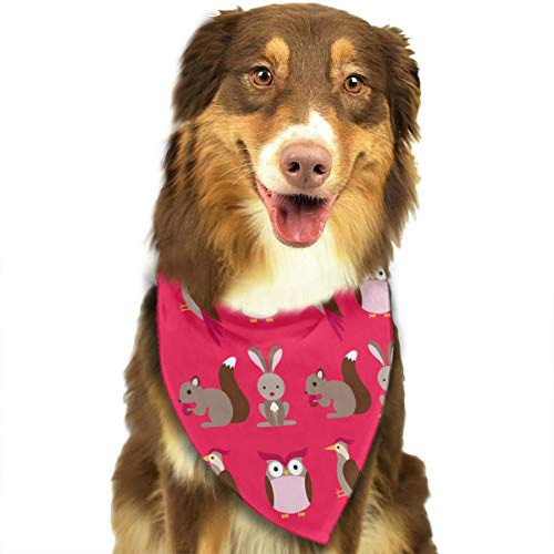 OURFASHION Cute Beautiful Squirrel Rabbit Owl Woodpecker Bandana Triangle Bibs Scarfs Accessories for Pet Cats and Puppies.Size is About 27.6x11.8 Inches (70x30cm). -