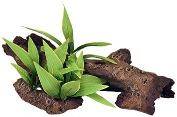 Rosewood Mopani madera con plantas acuario Decoración: Amazon.es: Productos para mascotas