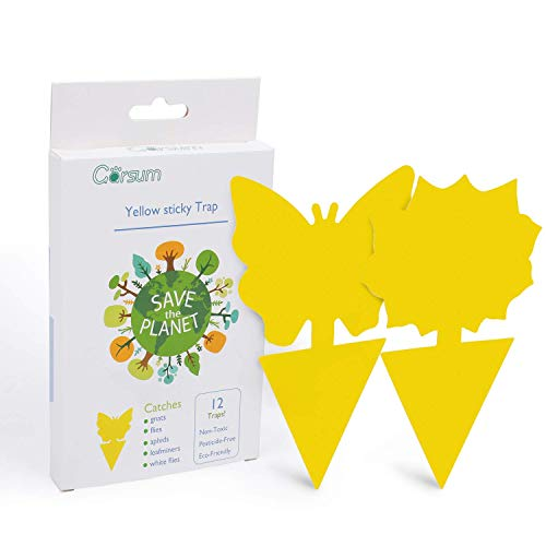 Garsum Sticky Trap,Fruit Fly and Gnat Trap Yellow Sticky Bug Traps for Indoor/Outdoor Use - Insect Catcher for White Flies,Mosquitos,Fungus Gnats,Flying Insects - Disposable Glue Trappers
