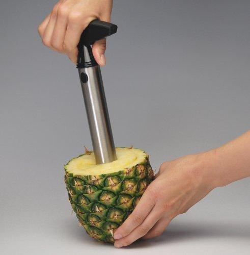 Rienar Easy Tool Stainless Steel Fruit Pineapple Corer Slicer Peeler Cut Stem Remover