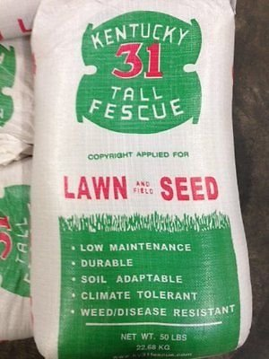 Kentucky 31 Tall Fescue Grass 25 lb of Quality Grass Seed 2018 Planting Season by MW146