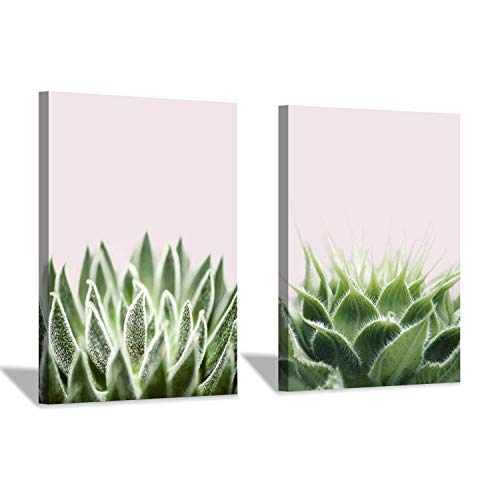 Flower & Botanical Canvas Wall Art: Green Succulent Graphic Art Print on Wrapped Canvas for Home Office Kitchen (12''x16''x2pcs)