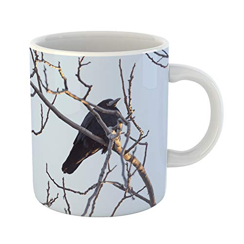 Emvency Coffee Tea Mug Gift 11 Ounces Funny Ceramic Blue Angry Black Crows on Tree Green Animal Beak Gifts For Family Friends Coworkers Boss Mug