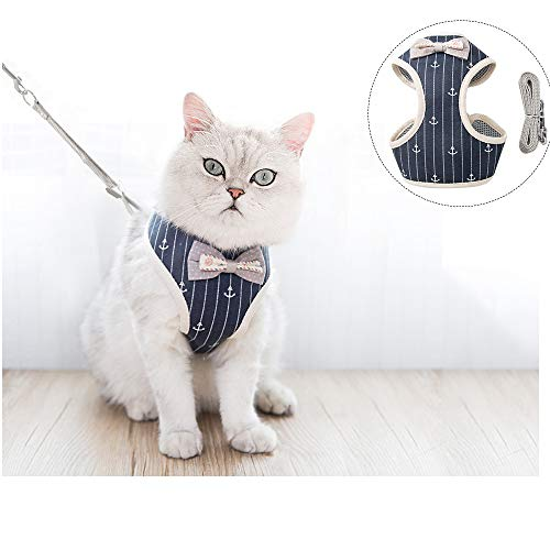 Ifanr Cat Harness with Leash, Kitten Escape Proof and Adjustable Vest Harnesses with Strap Soft Mesh for Walking and Outdoor. (M)