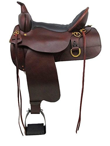 Amazon com : Circle Y High Horse Big Springs Saddle 16 Wide