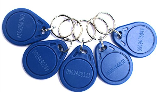 125KHz RFID Proximity EM 4100/4102 ID Keychains Tags Key Fobs For Access Control System(Pack of 100)