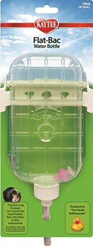 FLAT-BAC WATER BOTTLE - 16 OZ Flat Bac Water Bottle