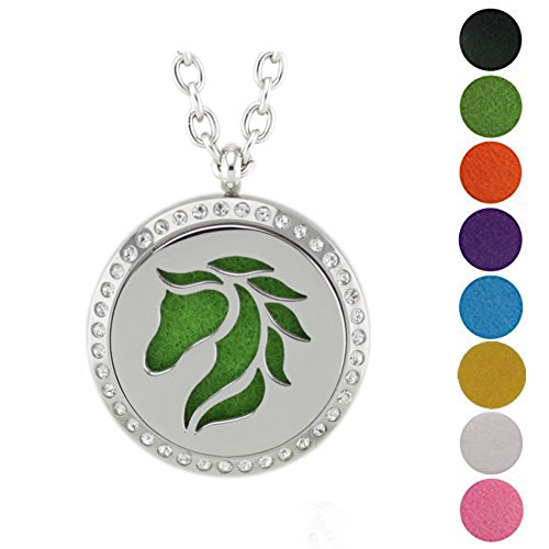 Easy Homemade Food Costumes (Jenia Essential Oil Diffuser Necklace Stainless Steel Aromatherapy Locket Pendant Free Chains and Pads)