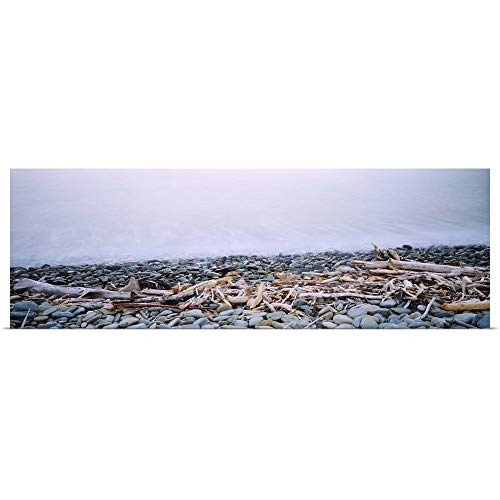 GREATBIGCANVAS Poster Print Entitled Close-up of Logging Debris and Pebbles at The Coast, Robin Hood Bay, Nelson, South Island, New Zealand by 48