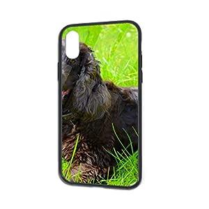 Irish Water Spaniel iPhone X/XS Case, TPU Bumper Protective-Compatible 15