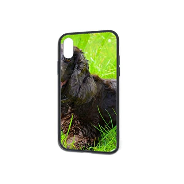 Irish Water Spaniel iPhone X/XS Case, TPU Bumper Protective-Compatible 1