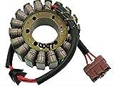 Ricks Motorsport Electric Stator 21-0097