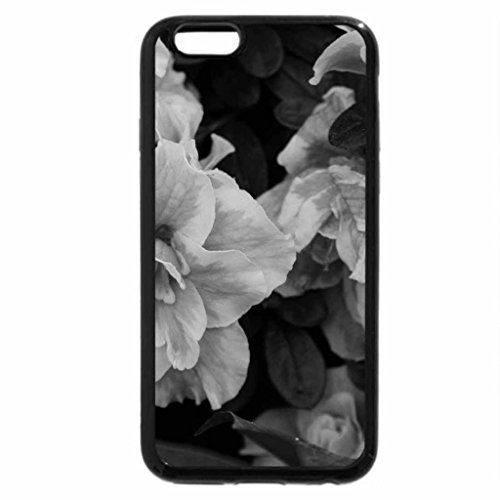 iPhone 6S Plus Case, iPhone 6 Plus Case (Black & White) - photos day at Edmonton garden 09