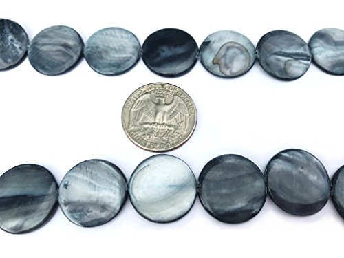 2 Pack Mother of Pearl Shell (Dyed) Royal Blue 19-20mm Flat Round Beads for Jewelry Making (Puffed Coin Beads)