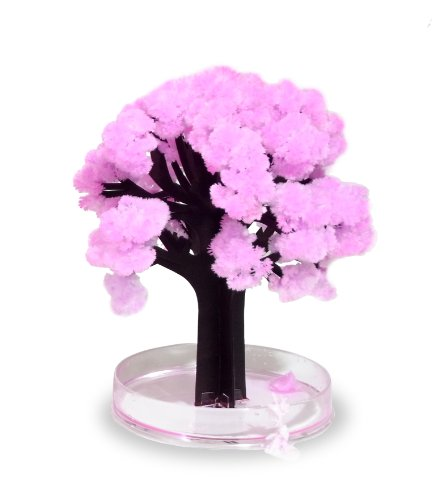 Thumbsup UK, UK Decorative Magic Sakura Trees