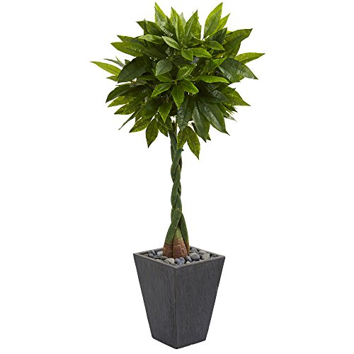 (Nearly Natural Money Artificial Tree in Slate Planter, 5')