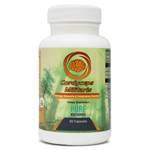 Cordyceps Mushroom Militaris Extract Capsules by Pure Nootropics - Organic, Vegan, Gluten Free Supplement, Workout Endurance, Increase Cognition, Energy and Recovery, Reduce Fatigue