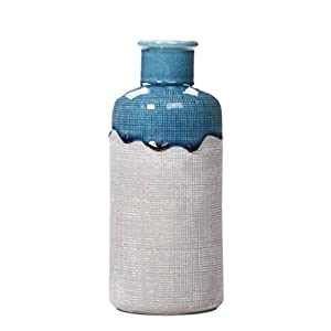 41j4VDpAQ1L._SS300_ Beach Vases & Coastal Vases