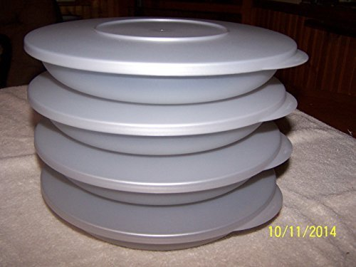Tupperware Impression Luncheon Plates Set of (4) with Covers Silver by TUPPERWARE