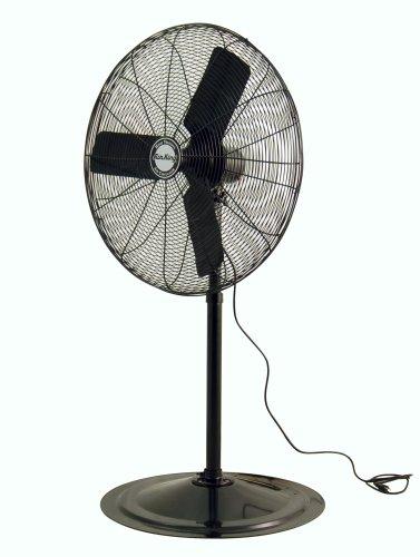 1 4 Inch Pedestal Fan : Air king inch horsepower industrial grade